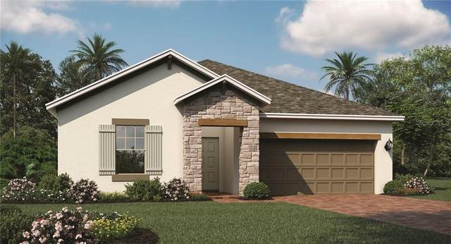 901 Carmillion Court, Groveland, FL 34736 (MLS #T3227893) :: Homepride Realty Services