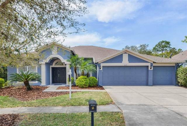 16137 Bridgepark Drive, Lithia, FL 33547 (MLS #T3227909) :: The Duncan Duo Team