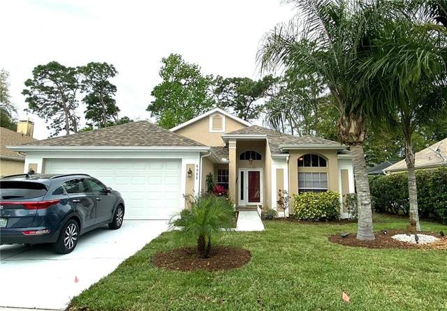 4909 Westerly Drive, New Port Richey, FL 34653 (MLS #T3227955) :: Griffin Group