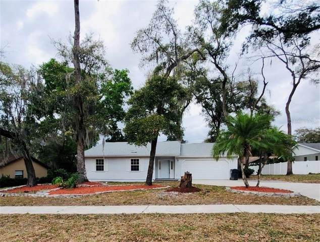 11505 River Country Drive, Riverview, FL 33569 (MLS #T3227963) :: Homepride Realty Services