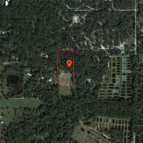 Carter Country Lane, Wimauma, FL 33598 (MLS #T3227985) :: Griffin Group