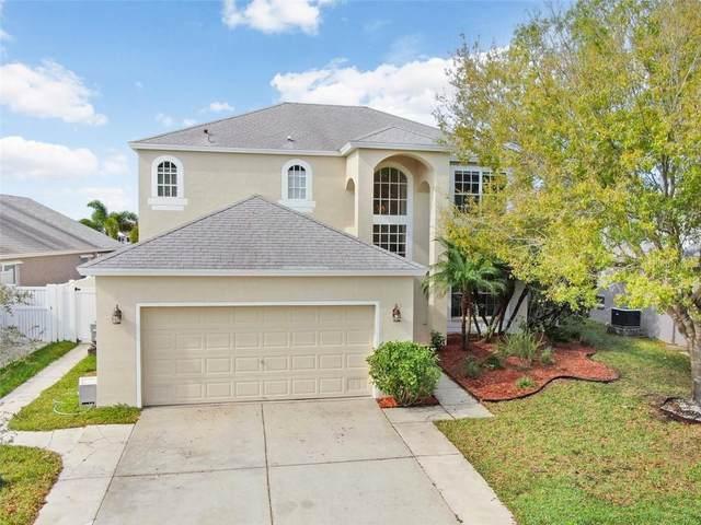 801 Addison Drive NE, St Petersburg, FL 33716 (MLS #T3228018) :: RE/MAX Realtec Group