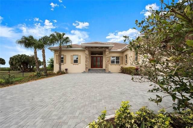 520 Oakwood Boulevard, Oldsmar, FL 34677 (MLS #T3228032) :: Bustamante Real Estate