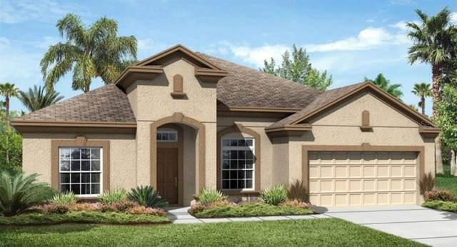 1807 Westerham Avenue, Saint Cloud, FL 34771 (MLS #T3228049) :: Griffin Group