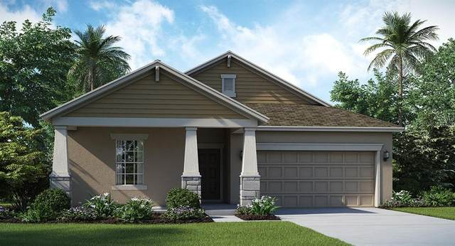 4364 Seven Canyons Drive, Kissimmee, FL 34746 (MLS #T3228061) :: RE/MAX Realtec Group