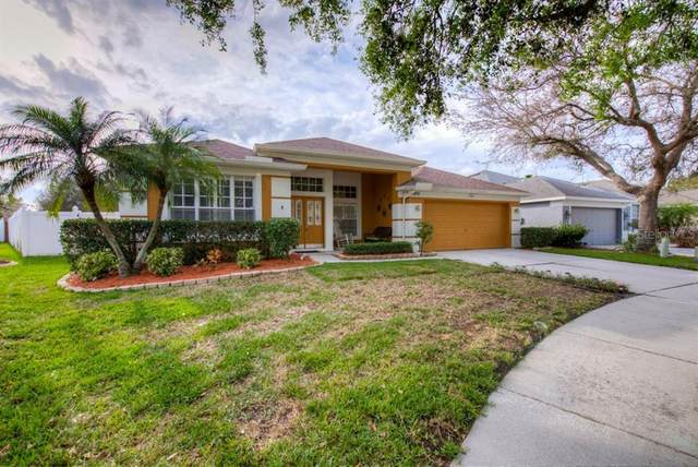 6805 Pleasant Oaks Place, Riverview, FL 33578 (MLS #T3228070) :: Griffin Group