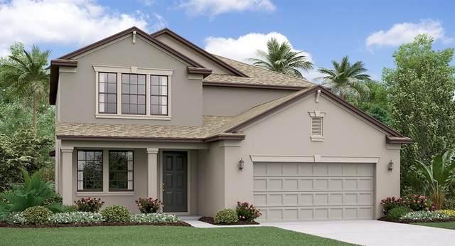 11805 Sunburst Marble Road, Riverview, FL 33579 (MLS #T3228106) :: Burwell Real Estate