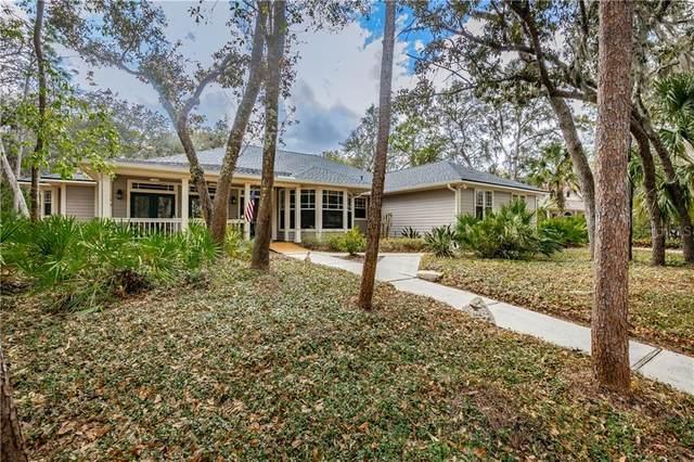 5810 Audubon Manor Boulevard, Lithia, FL 33547 (MLS #T3228114) :: The Brenda Wade Team