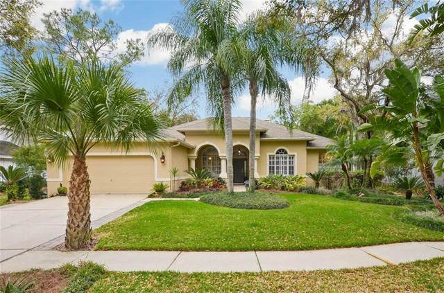 7133 Wareham Drive, Tampa, FL 33647 (MLS #T3228131) :: Dalton Wade Real Estate Group