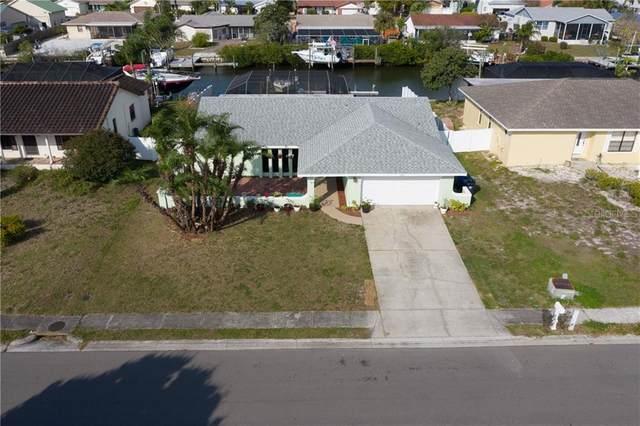 6520 Santiago Court, Apollo Beach, FL 33572 (MLS #T3228136) :: Burwell Real Estate