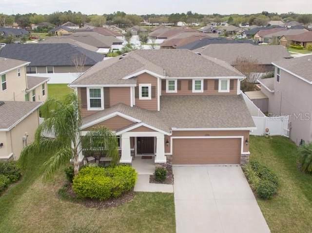10445 Riverdale Rise Drive, Riverview, FL 33578 (MLS #T3228163) :: Griffin Group