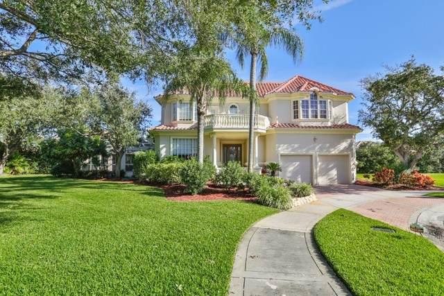 5914 La Rosa Lane, Apollo Beach, FL 33572 (MLS #T3228172) :: Burwell Real Estate
