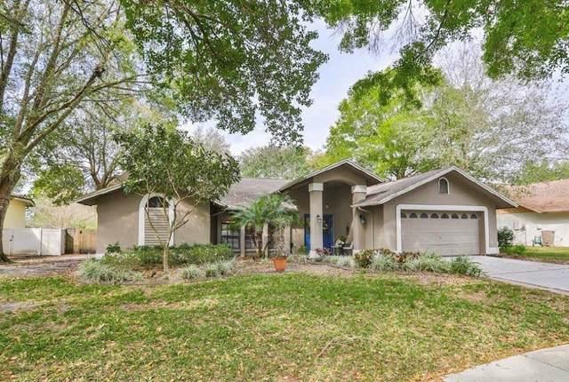 3822 Harrogate Drive, Valrico, FL 33596 (MLS #T3228179) :: Dalton Wade Real Estate Group