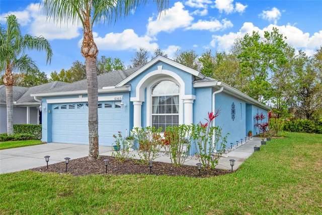 6505 Gentle Ben Circle, Wesley Chapel, FL 33544 (MLS #T3228202) :: The Duncan Duo Team