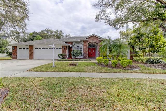 17303 Preakness Place, Odessa, FL 33556 (MLS #T3228216) :: Baird Realty Group