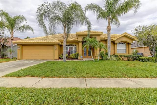 22423 Willow Lakes Drive, Lutz, FL 33549 (MLS #T3228235) :: Burwell Real Estate