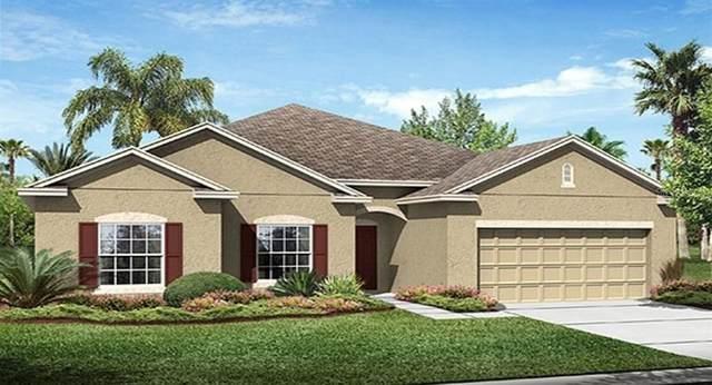 3812 San Isidro Circle, Saint Cloud, FL 34772 (MLS #T3228248) :: Keller Williams on the Water/Sarasota