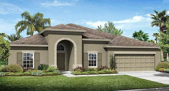 3566 Vega Creek Drive, Saint Cloud, FL 34772 (MLS #T3228254) :: Keller Williams on the Water/Sarasota
