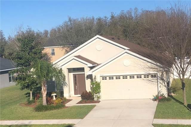 9650 Jaybird Lane, Land O Lakes, FL 34638 (MLS #T3228319) :: Baird Realty Group
