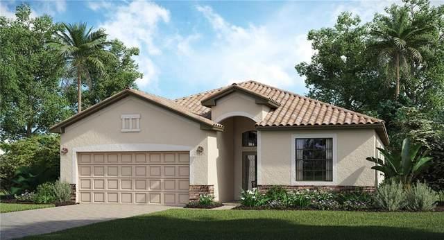 10187 Crooked Creek Drive, Venice, FL 34293 (MLS #T3228352) :: Icon Premium Realty