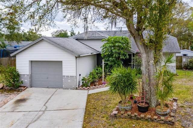 11302 Silverleaf Court, Riverview, FL 33569 (MLS #T3228412) :: Burwell Real Estate