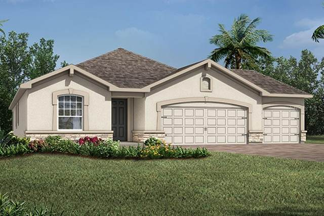 911 Better Days Place #74, Valrico, FL 33594 (MLS #T3228540) :: Zarghami Group