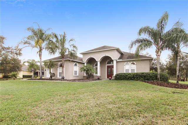 19707 Wild Water Cove, Lutz, FL 33559 (MLS #T3228661) :: Rabell Realty Group