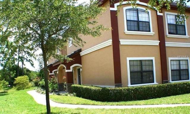 2262 Chianti Place 5-0528, Palm Harbor, FL 34683 (MLS #T3228811) :: Delgado Home Team at Keller Williams