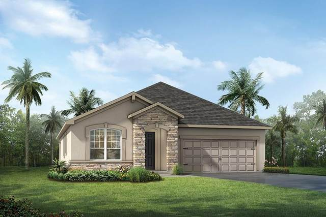 11548 Cedar Valley Drive #115, Riverview, FL 33578 (MLS #T3228901) :: Griffin Group