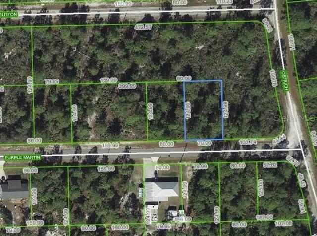 3251 Purple Martin Avenue, Lake Placid, FL 33852 (MLS #T3228917) :: Baird Realty Group