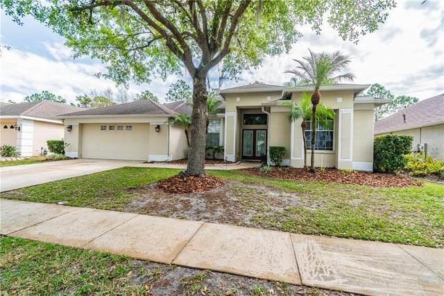 18117 Heron Walk Drive, Tampa, FL 33647 (MLS #T3229010) :: Team Bohannon Keller Williams, Tampa Properties