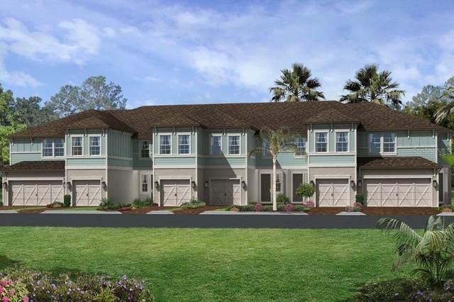 2438 Foggy Creek Circle, Clearwater, FL 33764 (MLS #T3229208) :: Dalton Wade Real Estate Group