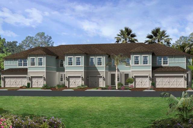 2440 Foggy Creek Circle, Clearwater, FL 33764 (MLS #T3229212) :: Dalton Wade Real Estate Group