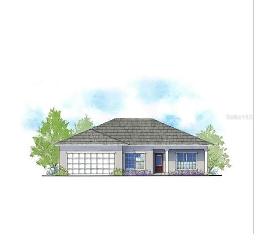 15709 SW 52ND ROAD Avenue, Ocala, FL 34473 (MLS #T3229571) :: Zarghami Group