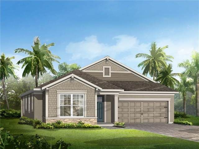 Address Not Published, Riverview, FL 33579 (MLS #T3229671) :: Cartwright Realty