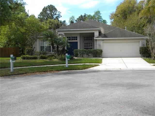 8201 Pinewood Run Court, Tampa, FL 33647 (MLS #T3229835) :: Team Bohannon Keller Williams, Tampa Properties
