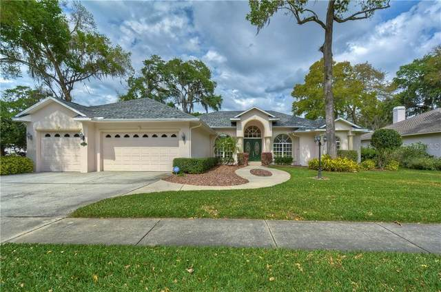 2408 Valrico Forest Drive, Valrico, FL 33594 (MLS #T3229883) :: Zarghami Group