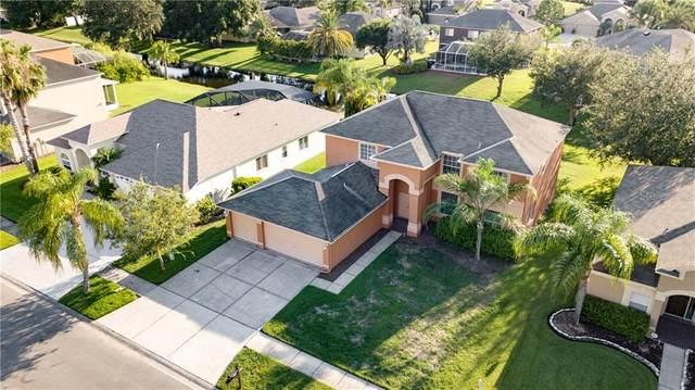 16130 Lytham Drive, Odessa, FL 33556 (MLS #T3230082) :: Griffin Group