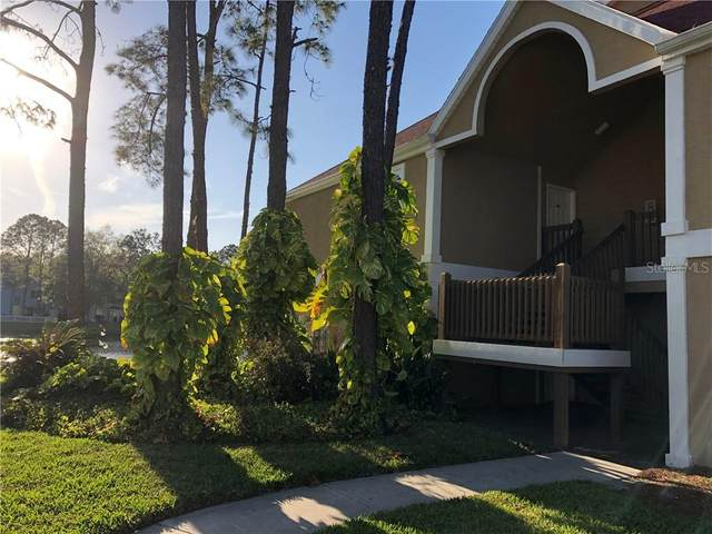 9481 Highland Oak Drive #1105, Tampa, FL 33647 (MLS #T3230275) :: Team Bohannon Keller Williams, Tampa Properties