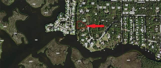 12388 W Restview Court, Homosassa, FL 34448 (MLS #T3230481) :: Lockhart & Walseth Team, Realtors