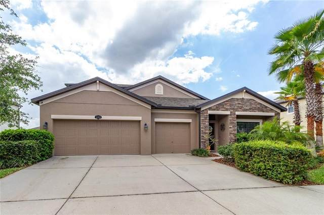 11819 Gilmerton Drive, Riverview, FL 33579 (MLS #T3230484) :: Lovitch Group, Keller Williams Realty South Shore