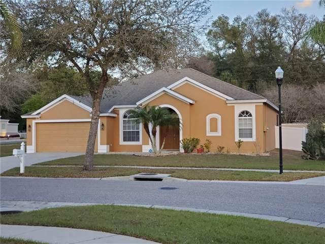 2053 Heartland Circle, Valrico, FL 33594 (MLS #T3230486) :: Zarghami Group