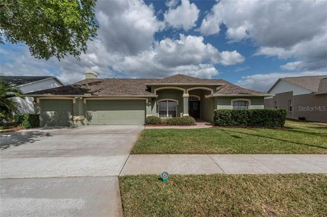 4405 Arranmore Circle, Valrico, FL 33596 (MLS #T3230502) :: Carmena and Associates Realty Group