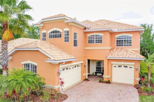 18007 Maui Isle Drive, Tampa, FL 33647 (MLS #T3230531) :: Team Bohannon Keller Williams, Tampa Properties