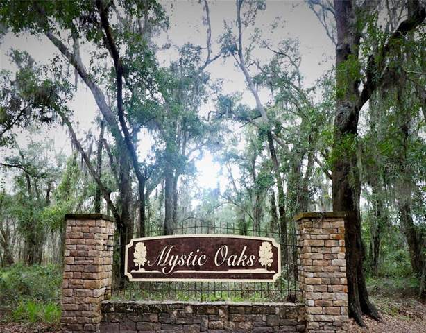 Lot 12 Mystic Oaks Drive, Plant City, FL 33563 (MLS #T3230559) :: Rabell Realty Group