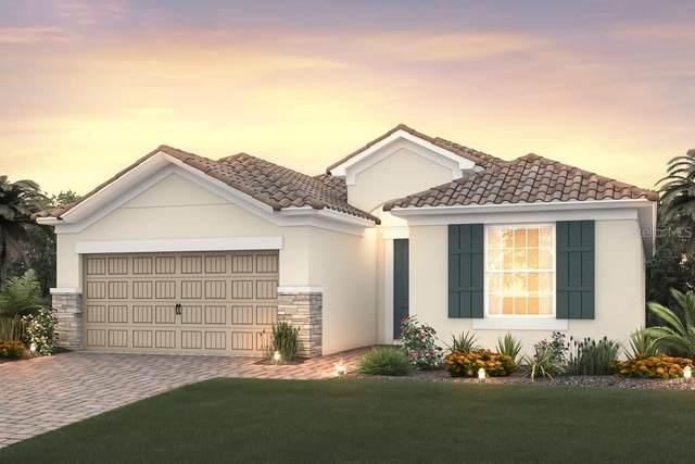 12123 Cranston Way, Bradenton, FL 34211 (MLS #T3230679) :: Burwell Real Estate