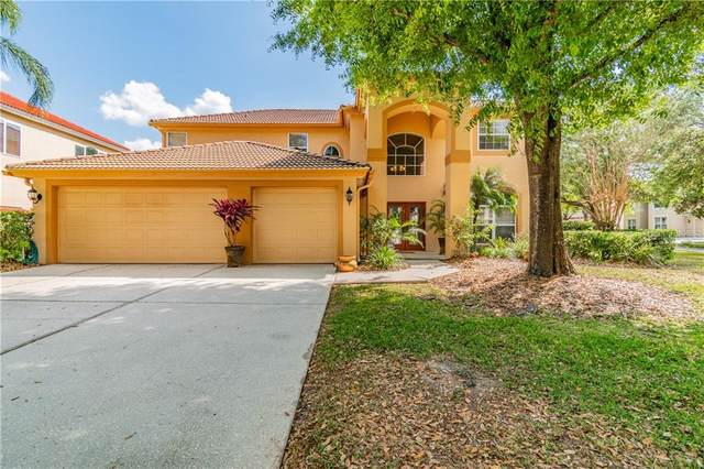18144 Regents Square Drive, Tampa, FL 33647 (MLS #T3230680) :: Team Bohannon Keller Williams, Tampa Properties