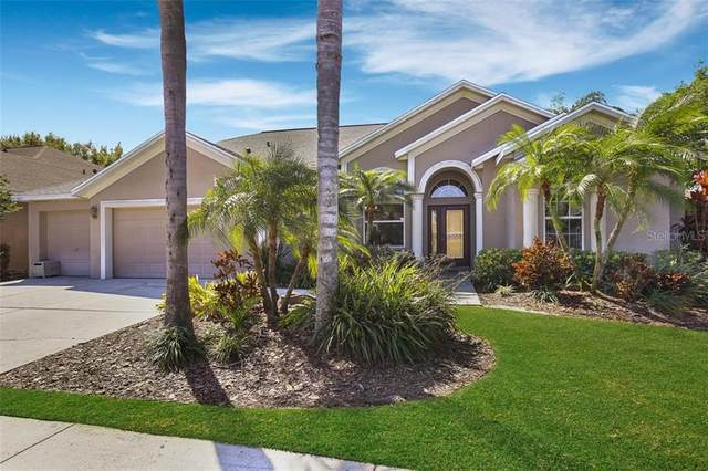 1503 Crooked Stick Drive, Valrico, FL 33596 (MLS #T3230770) :: Carmena and Associates Realty Group