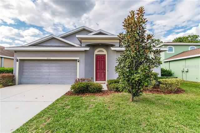 12313 Cricklewood Drive, Spring Hill, FL 34610 (MLS #T3230864) :: Team Pepka
