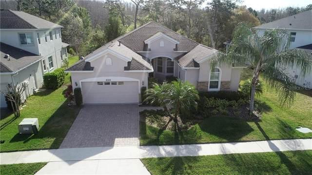 8522 Eagle Brook Drive, Land O Lakes, FL 34638 (MLS #T3231017) :: Cartwright Realty